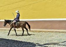 Homem e cavalo na rua Imagens de Stock