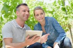 Homem e mulher ao lado das vinhas que guardam a tabuleta Fotografia de Stock Royalty Free
