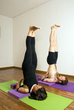 Homem e mulher que executam a ioga - vertical Foto de Stock Royalty Free