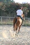 Homem em um cavalo Fotos de Stock
