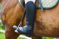 Homem em um cavalo Fotos de Stock Royalty Free