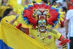 Homem em um traje do tigre Fotos de Stock