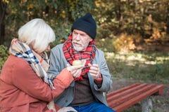 Homem envelhecido agradável que dá uma maçã a sua data fotos de stock