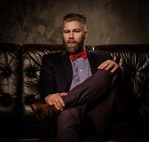 Homem farpado antiquado que senta-se no sofá de couro confortável isolado no cinza Fotos de Stock Royalty Free
