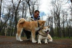Homem feliz com dois cães Fotografia de Stock Royalty Free