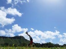Homem Handstanding no parque de Kapiolani imagens de stock