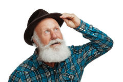 Homem idoso com uma barba longa Fotos de Stock
