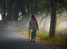 Homem idoso da vila de bengal fotos de stock