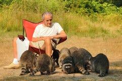 Homem idoso e os raccoons Imagem de Stock