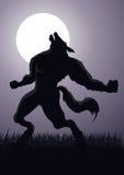Homem-lobo Imagens de Stock Royalty Free