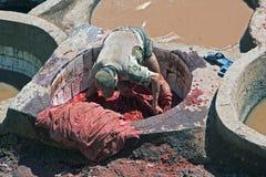 Homem marroquino no tannery Foto de Stock