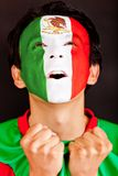 Homem mexicano Excited Foto de Stock Royalty Free