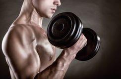 Homem muscular foto de stock royalty free
