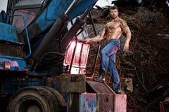 Homem muscular Fotos de Stock