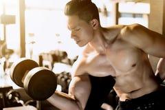 Homem muscular do halterofilista Fotos de Stock Royalty Free
