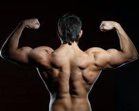 Homem muscular novo imagem de stock royalty free