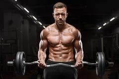 Homem muscular que dá certo no gym que faz exercícios para os bíceps, Abs despido masculino forte do torso imagens de stock