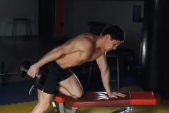 Homem muscular que dá certo no gym que faz exercícios com pesos no tríceps, Abs despido masculino forte do torso fotografia de stock royalty free