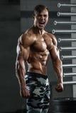 Homem muscular que mostra os músculos, levantando no gym Abs despido masculino forte do torso, dando certo fotos de stock