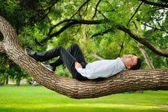 Homem na árvore imagem de stock royalty free