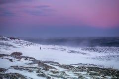 Homem na costa nevado do mar de Barents em Teriberka, região de Murmansk, Rússia Imagem de Stock Royalty Free