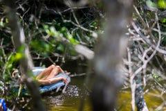 Homem na filhós de flutuação em um rio no borrão Forest Foreground fotos de stock royalty free