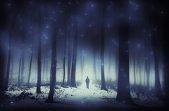 Homem na floresta mágica surreal no inverno com estrelas Fotos de Stock