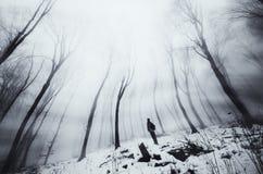 Homem na floresta surreal do inverno Fotos de Stock Royalty Free