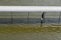Homem na inundação da passagem Imagens de Stock Royalty Free