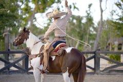 Homem na parte traseira do cavalo imagem de stock