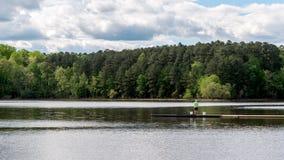 Homem na posi??o verde da camisa na doca no lago imagem de stock royalty free