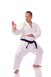 Karateka Imagem de Stock Royalty Free