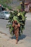 Homem nepalês Imagens de Stock Royalty Free
