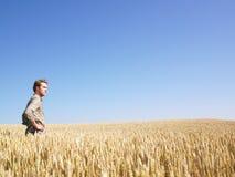 Homem no campo de trigo Imagens de Stock