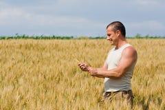 Homem no campo de trigo fotografia de stock