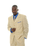 Homem no terno brilhante Fotografia de Stock