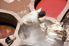 Homem no trabalho em um tannery Fotos de Stock Royalty Free
