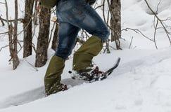 Homem nos sapatos de neve na neve na floresta foto de stock