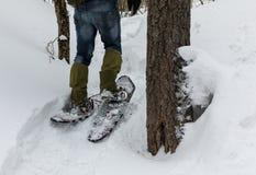 Homem nos sapatos de neve na neve na floresta imagem de stock royalty free