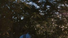 Homem novo ativo feliz do turista do movimento lento que caminha com a trouxa entre árvores e arbustos ensolarados bonitos de flo video estoque