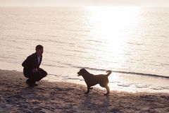 homem novo com o cão na praia Fotografia de Stock
