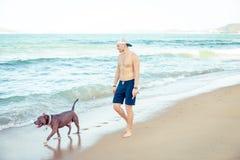 Homem novo com o terrier de pitbull americano do cão que anda na praia tropical imagens de stock