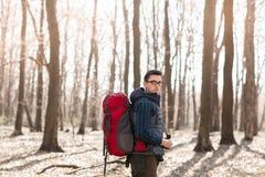 Homem novo com a trouxa que caminha na floresta fotos de stock
