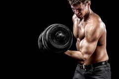 Homem novo descamisado atlético dos esportes - o modelo da aptidão guarda o peso no gym Copie a frente do espaço seu texto foto de stock