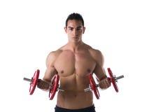 Homem novo descamisado muscular que exercita o bíceps com pesos imagens de stock