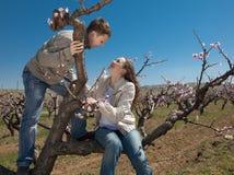 Homem novo e mulher em uma árvore Imagens de Stock