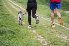 Homem novo e mulher que correm com cão Imagens de Stock Royalty Free