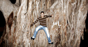Homem novo egípcio árabe feliz que escala a árvore enorme Imagem de Stock