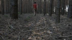 Homem novo em uma camisa vermelha que atravessa a opinião conífera da parte traseira da floresta vídeos de arquivo