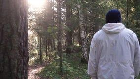 Homem novo na viagem de acampamento Conceito da liberdade e da natureza Opinião o homem da parte traseira que anda nas madeiras a fotografia de stock royalty free